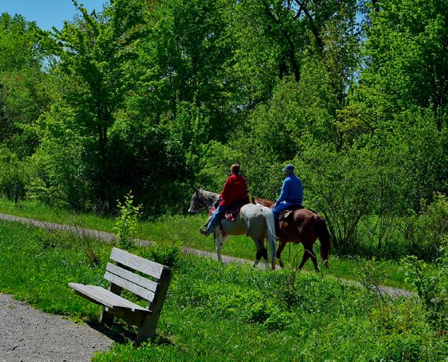 Horseback Riding Bridle Trails In Lake Metroparks