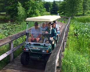 Trail Cart Tours