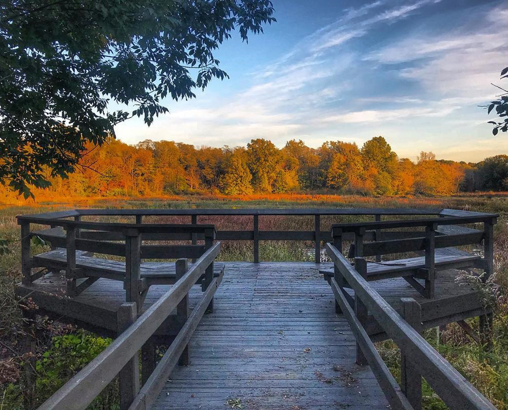 Arcola Creek Park - Fall colors - Lake Metroparks - Photo by Desirée Dulla
