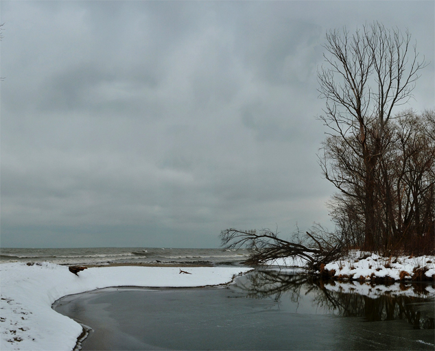 Arcola Creek Park - winter - estuary - Lake Erie - Lake Metroparks - photo by Jim Marquardt