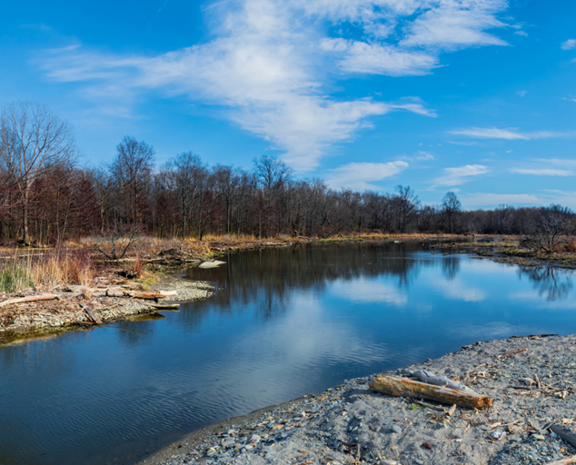 Arcola Creek Park - creek - estuary - Lake Erie - fall - Lake Metroparks - Photo by Jim Marquardt