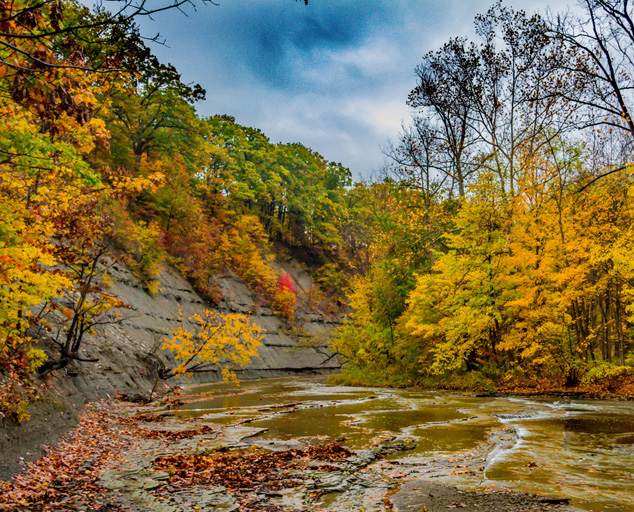 Big Creek at Liberty Hollow - park - creek - trees - fall colors- valley - Lake Metroparks - photo by Jim Marquardt