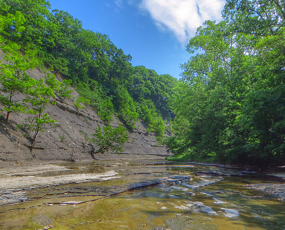 Big Creek at Liberty Hollow - park - creek - trees - valley - Lake Metroparks - photo by Kevin Vail
