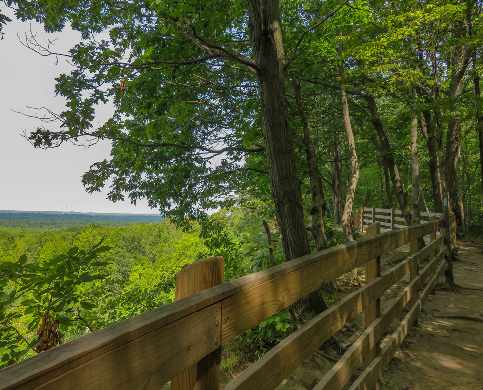 Chapin Forest Reservation - trail - trees - scenic overlook - Lake Metroparks - photo by Kevin Vail