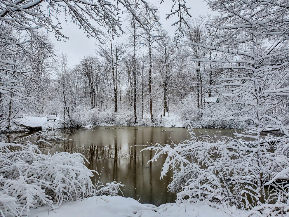 Chapin Forest Reservation - pond - trees - snow - winter - Lake Metroparks - photo by Erik Drost