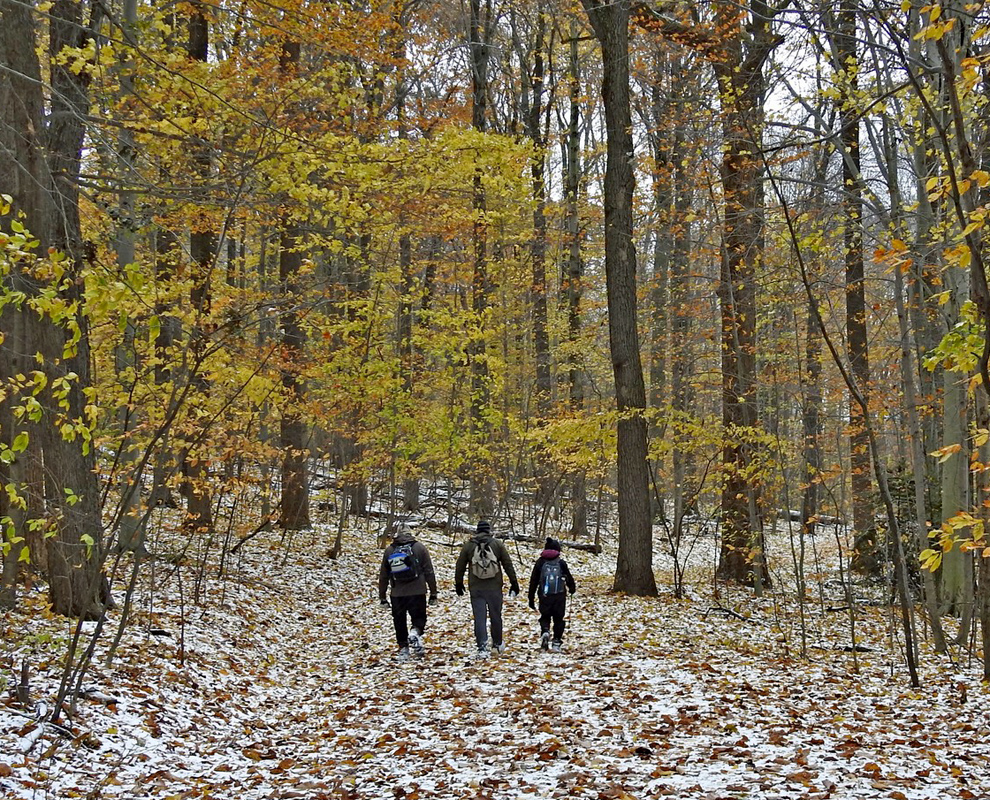 Chapin Forest Reservation winter - trail - trees - Lake Metroparks - photo by Jen Beck
