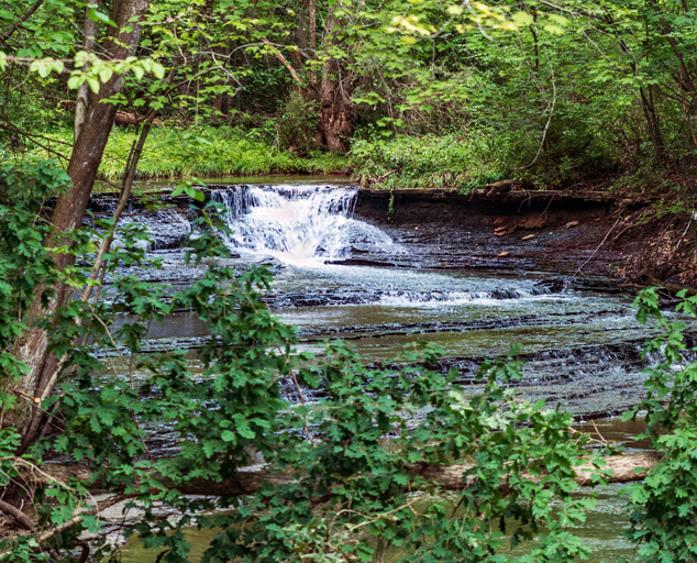 Environmental Learning Center - park - trees - creek - waterfall - snow - Lake Metroparks - photo by Carolyn Lingenfelter