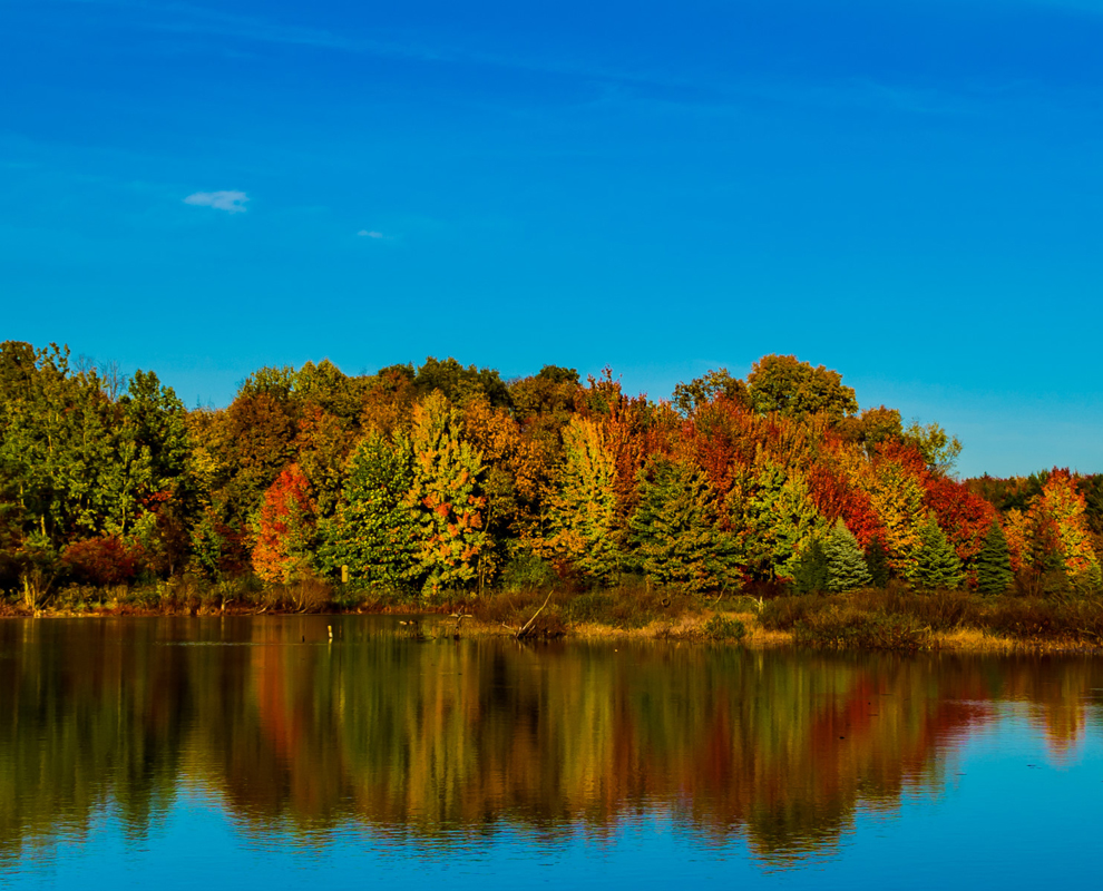 Girdled Road Reservation - park - creek - fall colors - pond - trees- waterfall - Lake Metroparks - Jim Marquardt
