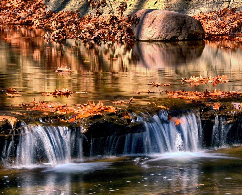 Girdled Road Reservation - park - creek - fall leaves - waterfall - Lake Metroparks - Sandra  Dulla