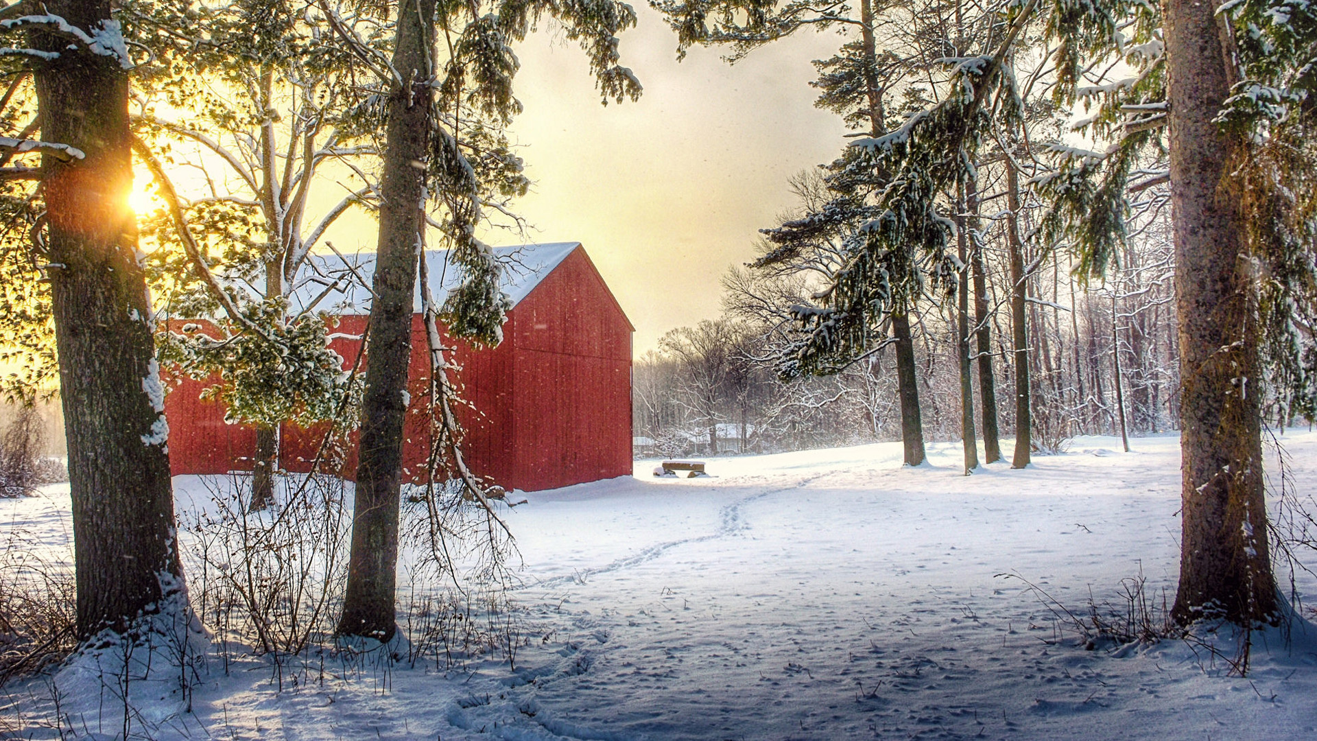 Hosea Brown Barn at Girdled Road Reservation - Lake Metroparks - Photo by Sandra Dulla