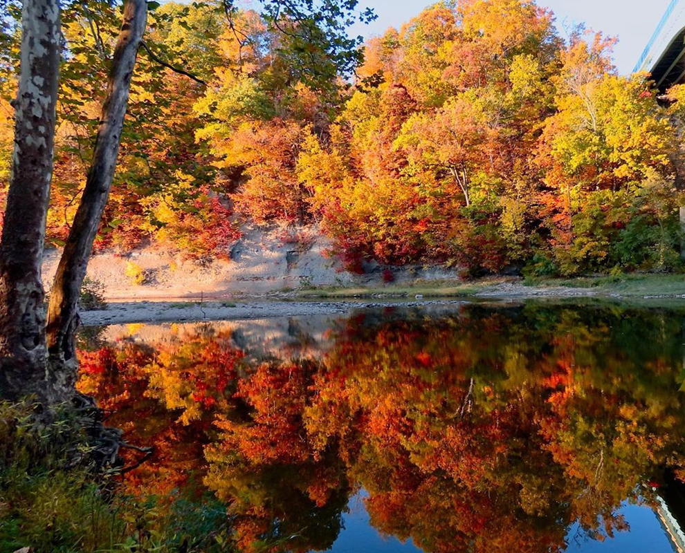 Hidden Valley Park - Grand River - trees - fall - reflection -  Lake Metroparks - Christy Buser