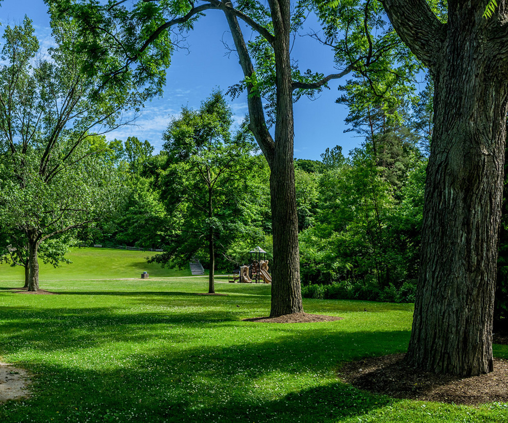 Hidden Valley Park - trees - playground - Lake Metroparks -Jim Marquardt