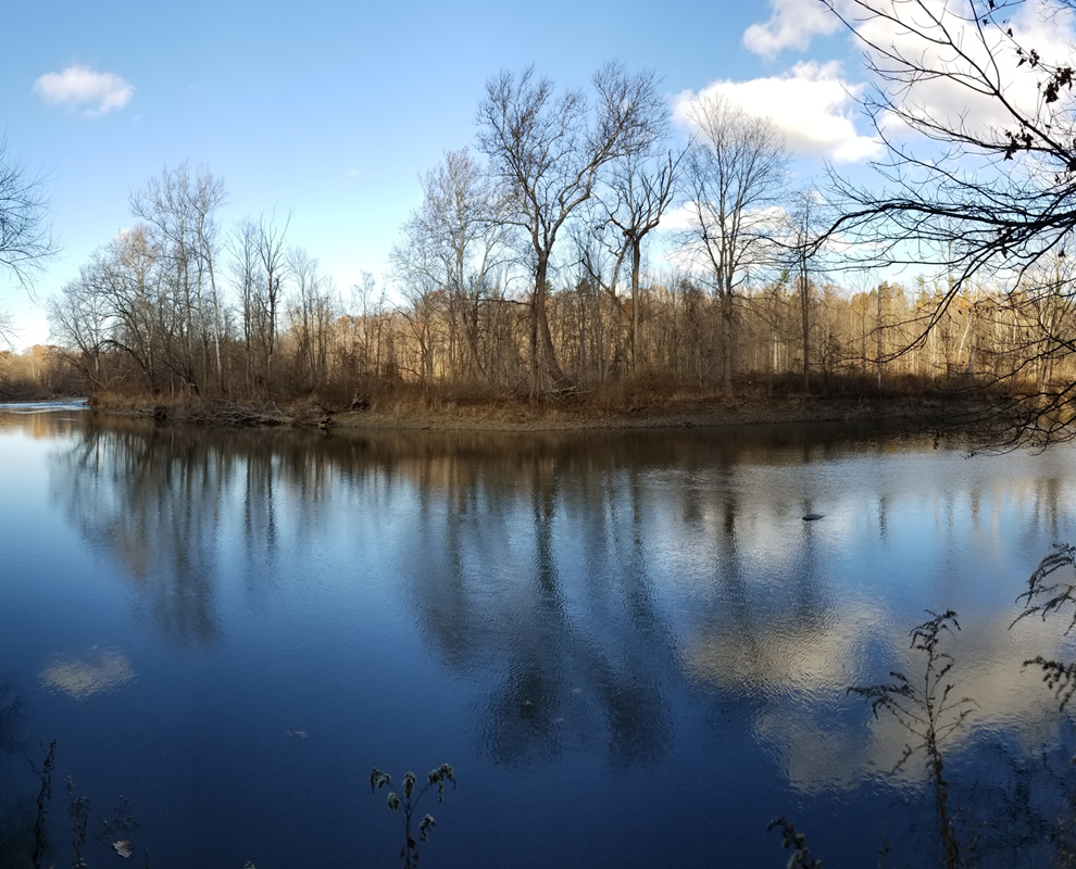 Indian Point Park - trail - trees - Grand River- Lake Metroparks - Photo by Ron Washington