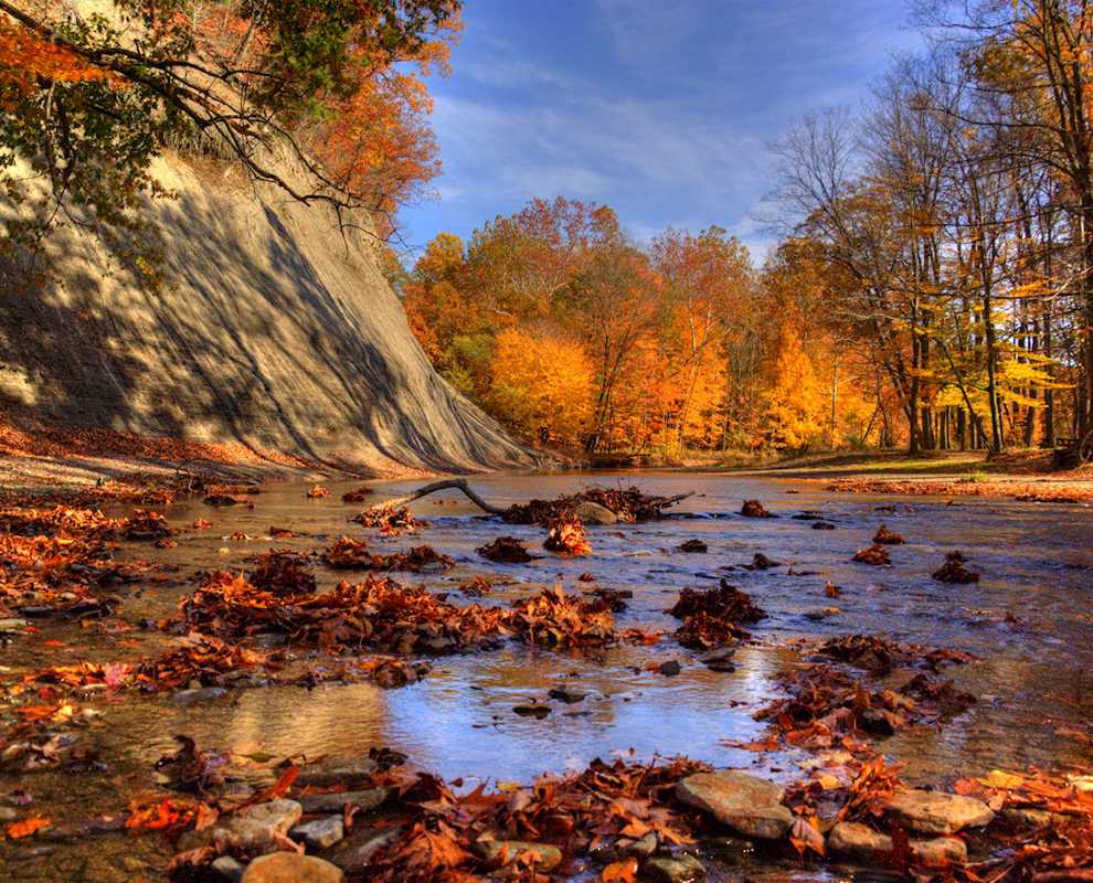Indian Point Park - Paine Creek - trees - fall colors - Lake Metroparks - Jeff Taipale