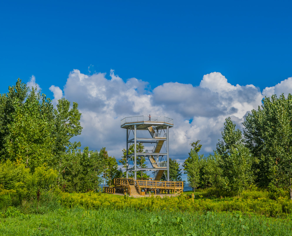 Lake Erie Bluffs - park - observation tower - trees - Lake Metroparks - Jim Marquardt