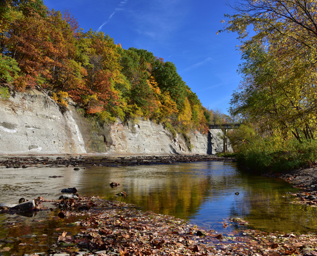 Pleasant Valley Park - Valley - trees - fall colors - Chagrin River - Lake Metroparks - Sue Atwell