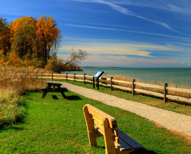 Lake Erie Bluffs - trail - trees - fall colors - Lake Erie - Lake Metroparks - Jeff Taipale