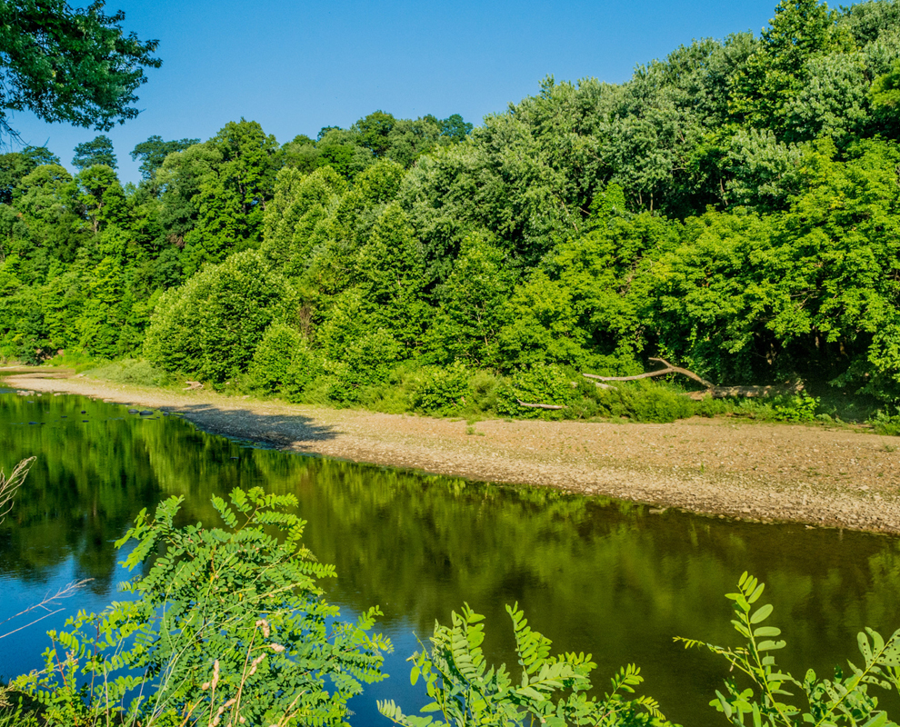 Beaty Landing - park - Grand River - trees - blue sky - Lake Metroparks - photo by Jim Marquardt