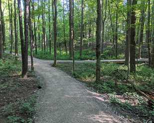 New Trail Improvements at the Environmental Learning Center