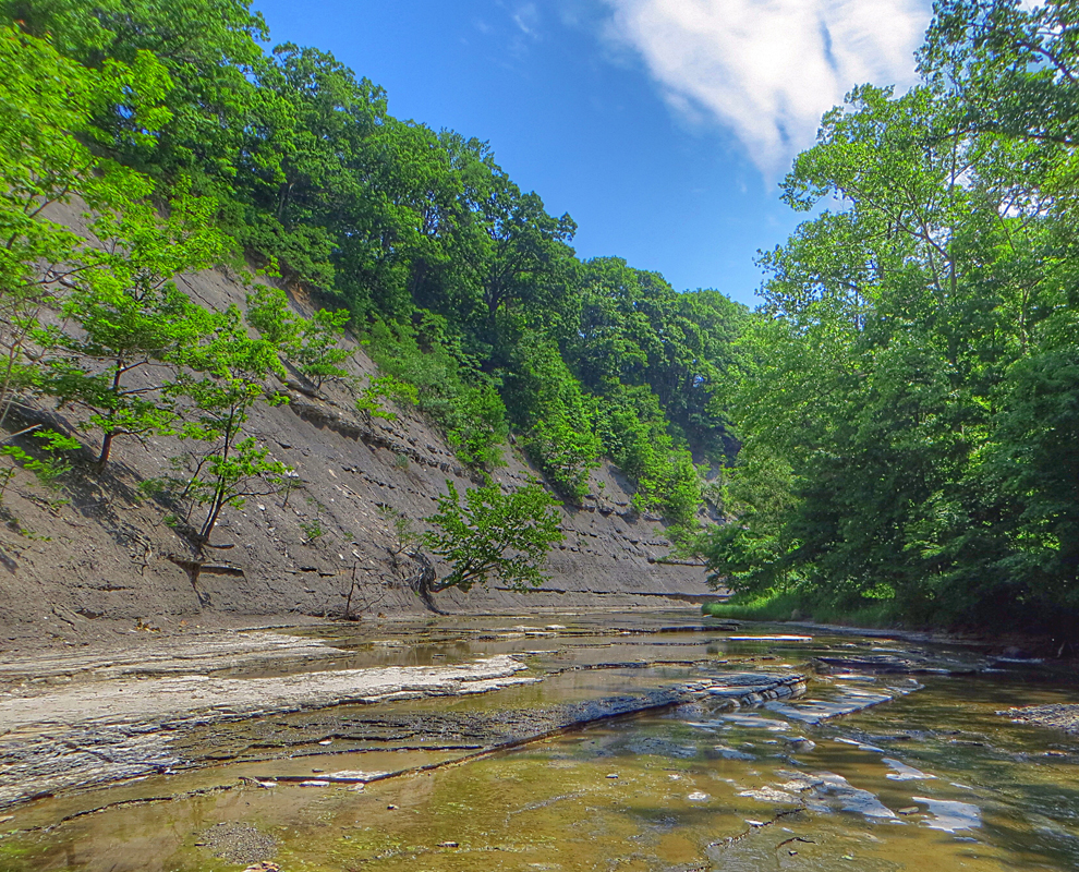 Big Creek at Liberty Hollow - park - creek - trees - valley - Lake Metroparks - photo by Jim Marquardt