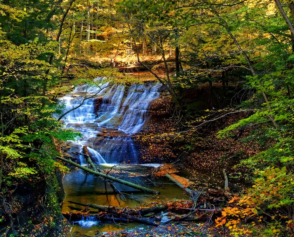 Greenway Corridor - park - Chair Factory Falls - trees - Lake Metroparks - photo by Jeff Taipale
